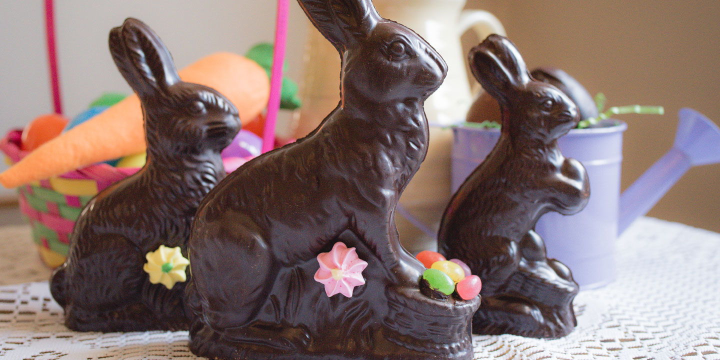 Easter chocolate bunnies in white, dark and milk chocolate in an arrangement with basket and flowers.